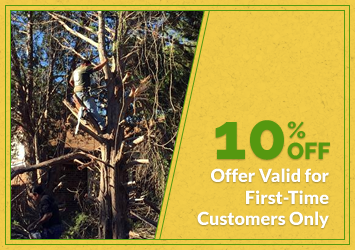 10% Off Offer Valid for First-Time Customers Only