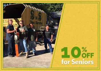 10% Off for Seniors